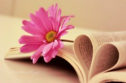 Flower_book